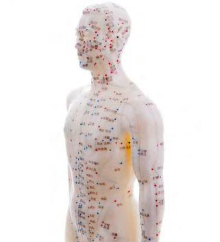 Используя иглоукалывание, массаж, лекарственные препараты, врач должен помочь организму запустить нужную программу